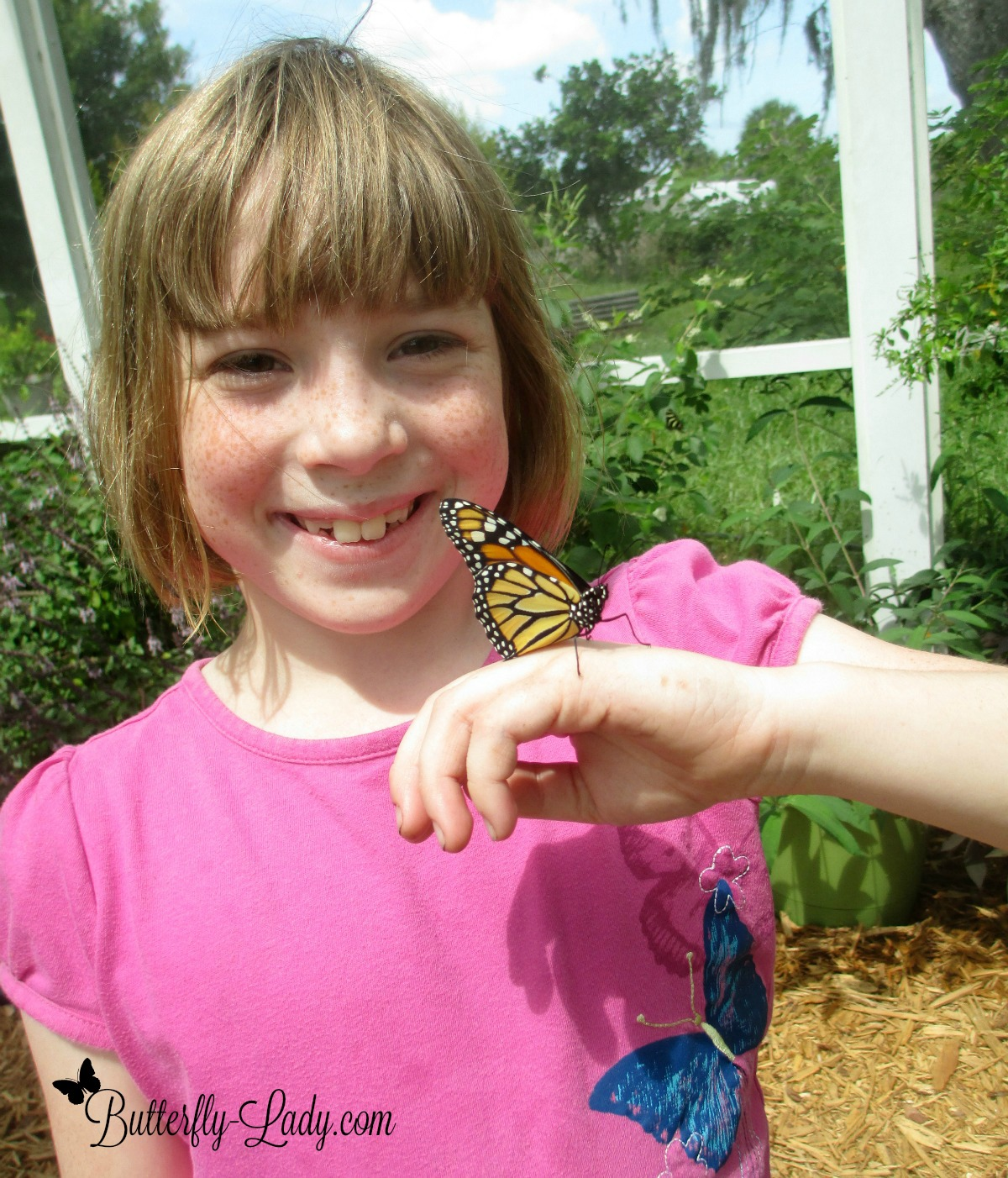 Monarch on Girl's Hand